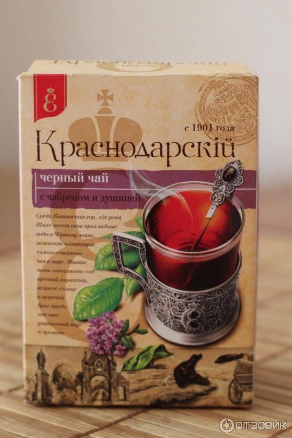 Чай с душицей – напиток для здоровья