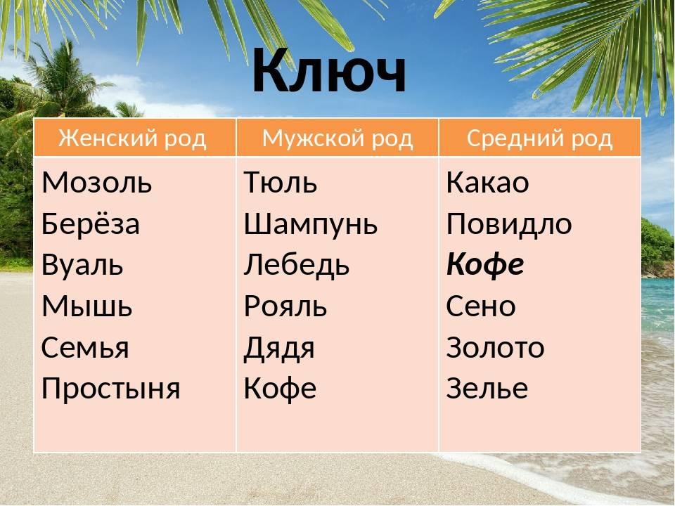 Род слова «кофе» в русском языке