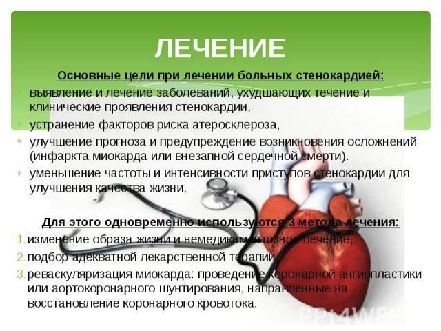 Полезен ли цикорий для сердца и сосудов — 5 лечебных свойств