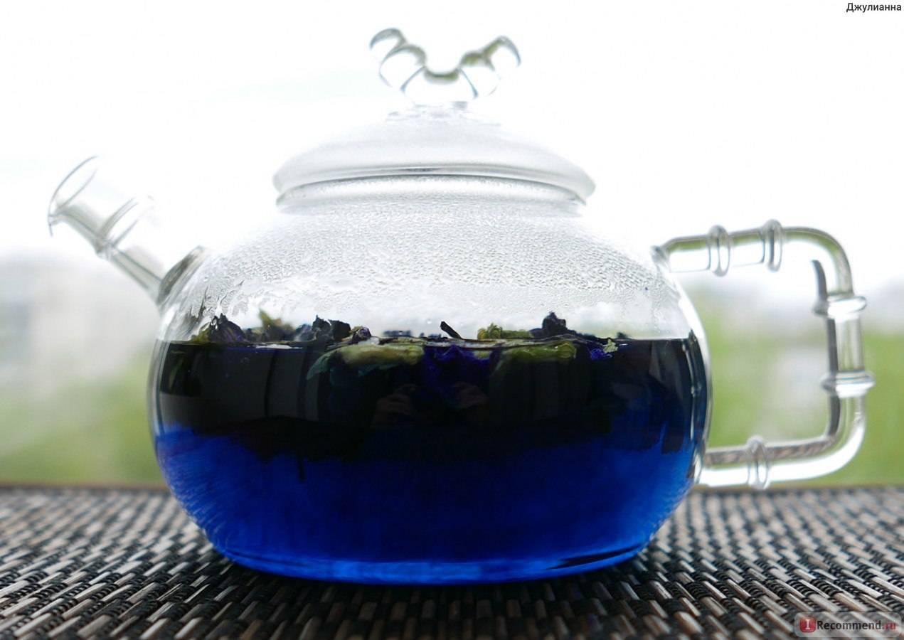 Пурпурный чай чанг шу для похудения: как правильно принимать, полезные свойства