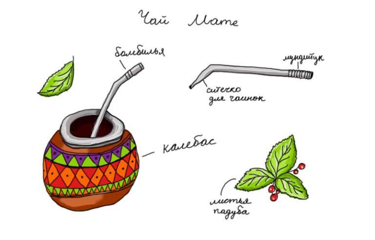 Как заваривать и пить мате, полезный парагвайский чай