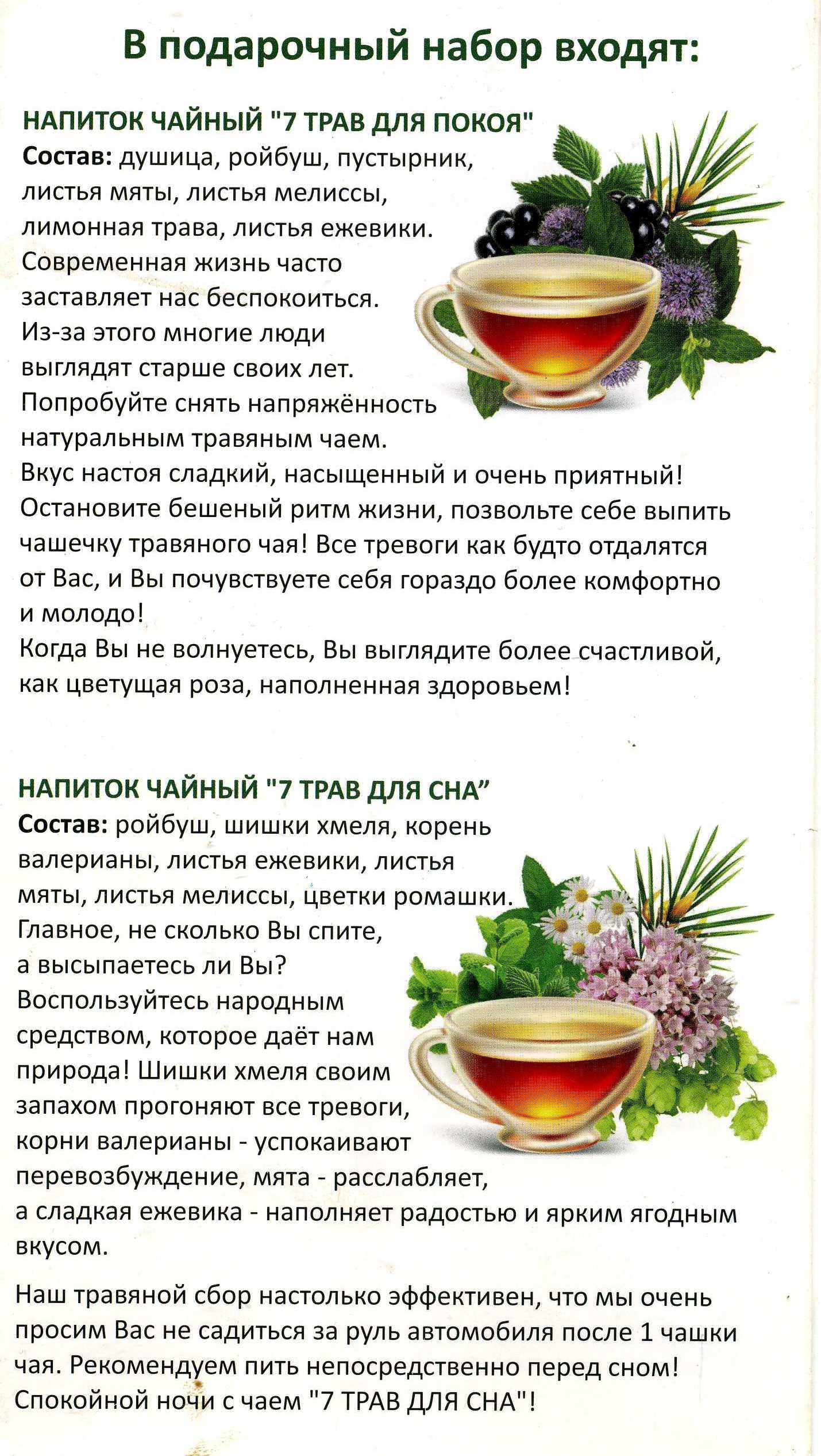Хвойный чай - секреты полезного напитка