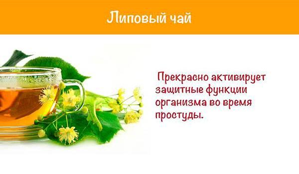 Белый чай при беременности | компетентно о здоровье на ilive