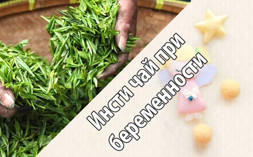 Чай инсти: показания к применению, состав, лечебные свойства