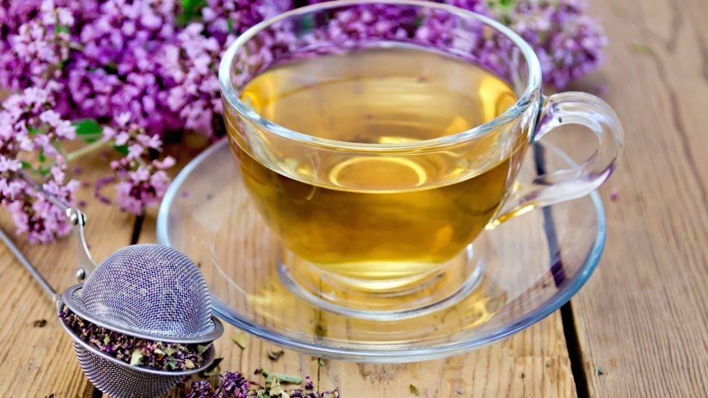 Чай с мелиссой: полезные свойства и противопоказания