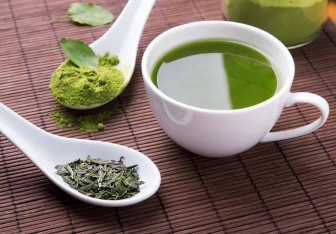 Зеленый чай с молоком — вред и польза при правильном употреблении