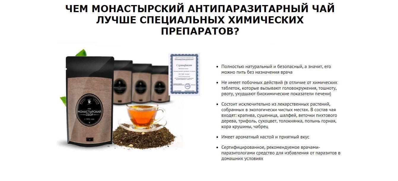 Применение чая от паразитов: целебные свойства и рецепты | medded.ru