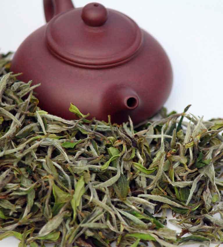 Бай му дань – чай белый пион