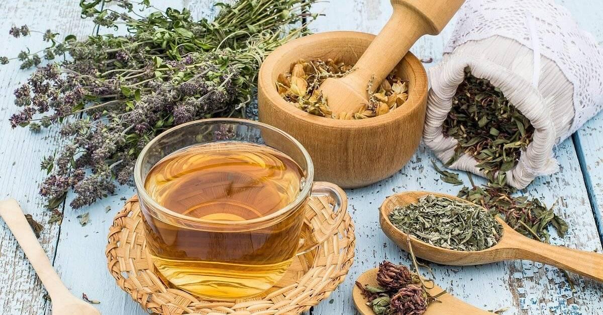 Лучшие рецепты чая от кашля