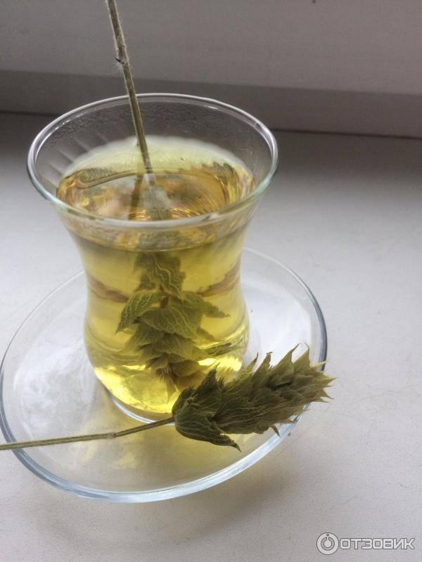 Ада чай – турецкий чай из шалфея