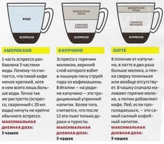 Как приготовить капучино в кофемашине с помощью капучинатора, видеорецепт