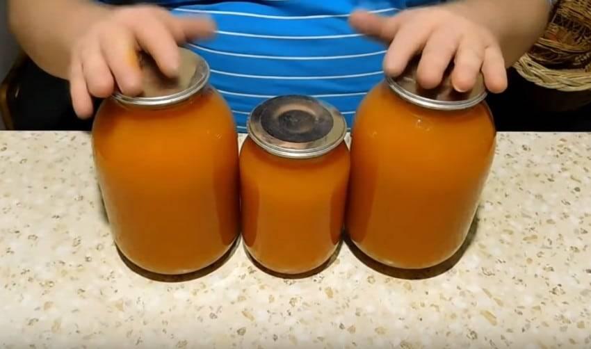 Как сделать сок без соковыжималки