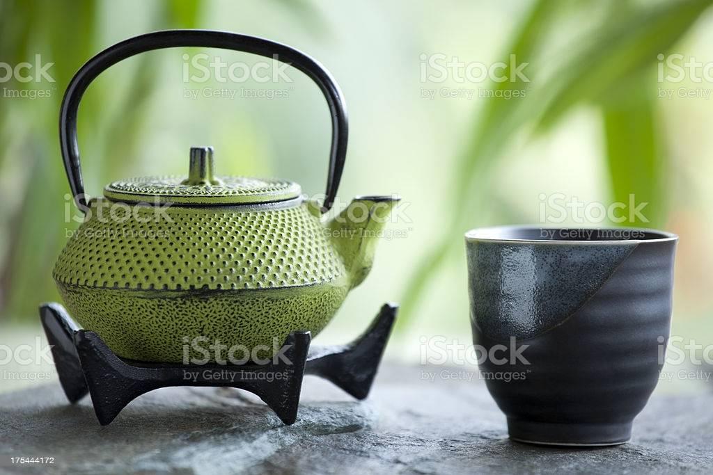 Заварочный чайник - советы по выбору и уходу за ним. рейтинг лучших чайников 2018 года