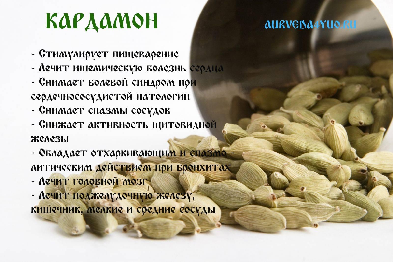 Как приготовить кофе с кардамоном - рецепты, польза и вред
