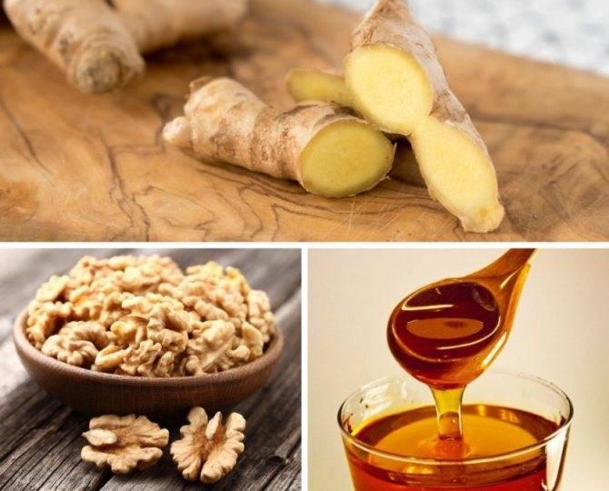 """Польза и вред перегородок грецкого ореха для здоровья организма человека – портал """"стань лучше"""""""