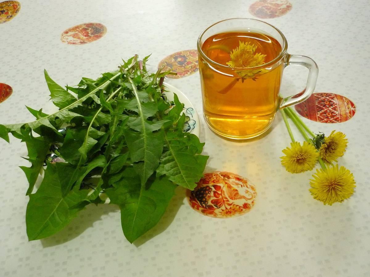 7 полезных свойств чая из одуванчиков