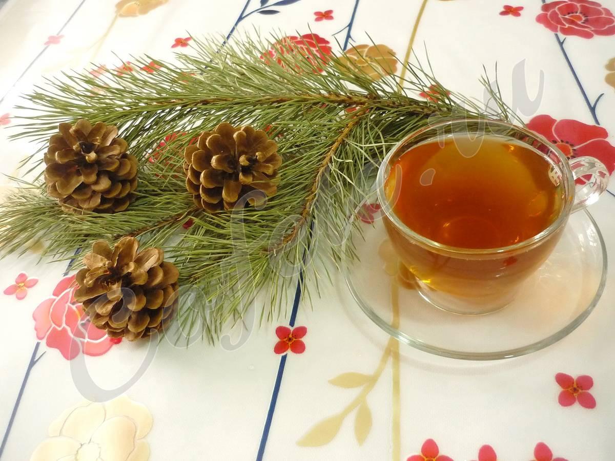 Чем полезен ароматный чай из сосновых иголок?