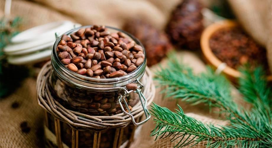 Кедровый орех: польза и вред