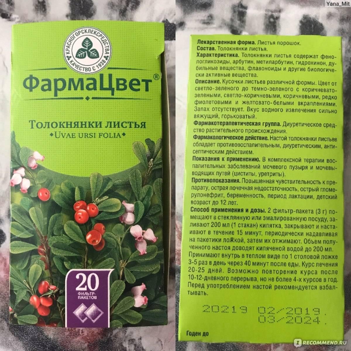 Всё о полезных свойствах почечного чая и противопоказаниях к его приёму - с рецептами применения при болезнях и во время беременности