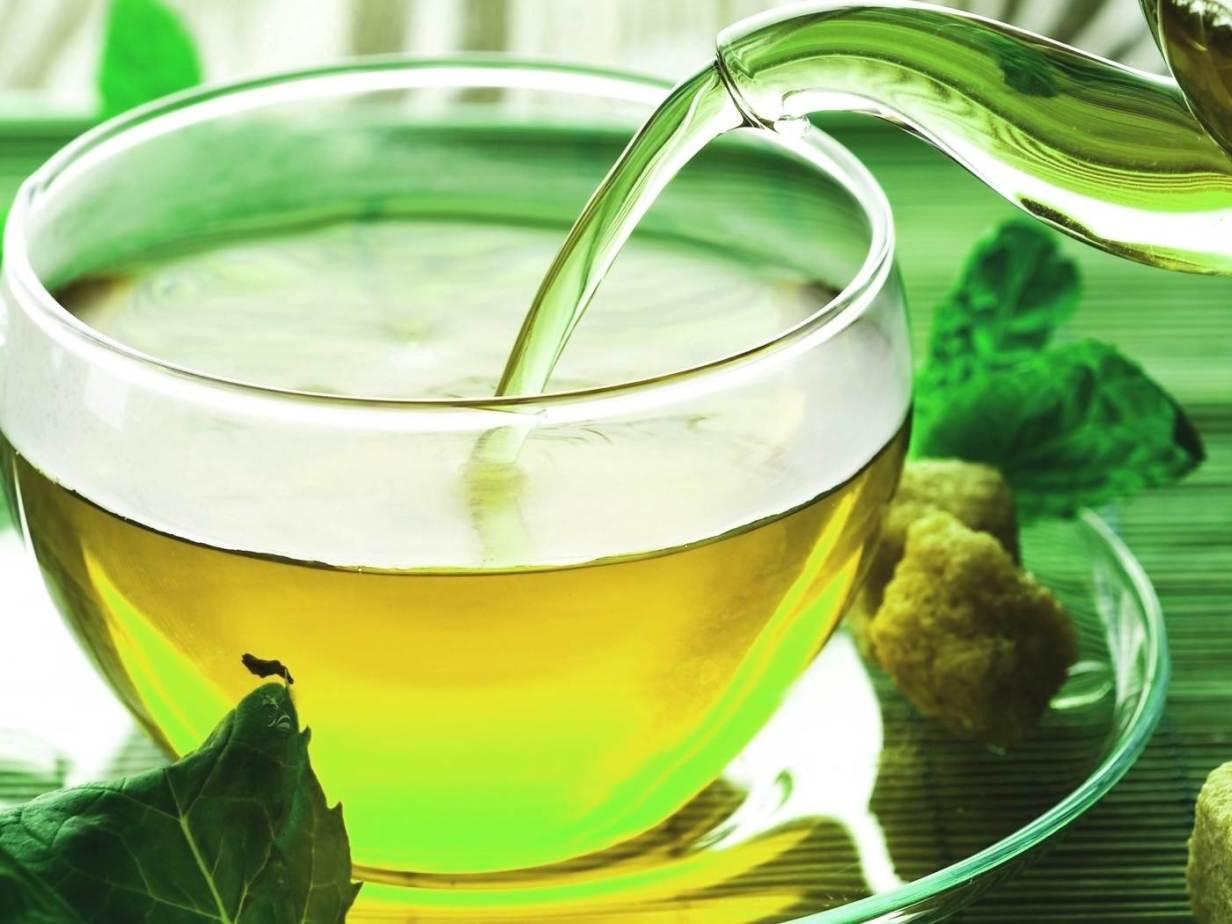 Экстракт зеленого чая: польза и вред, применение