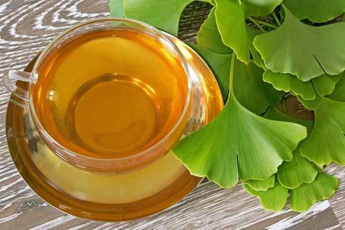 Листья гинкго билоба – свойства и применение