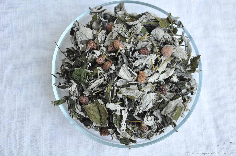 Чай из листьев малины: польза и вред, ферментация