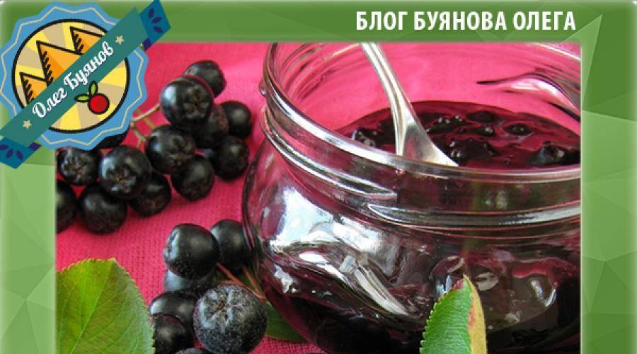 Черноплодная рябина (арония): лечебные свойства, польза и противопоказания