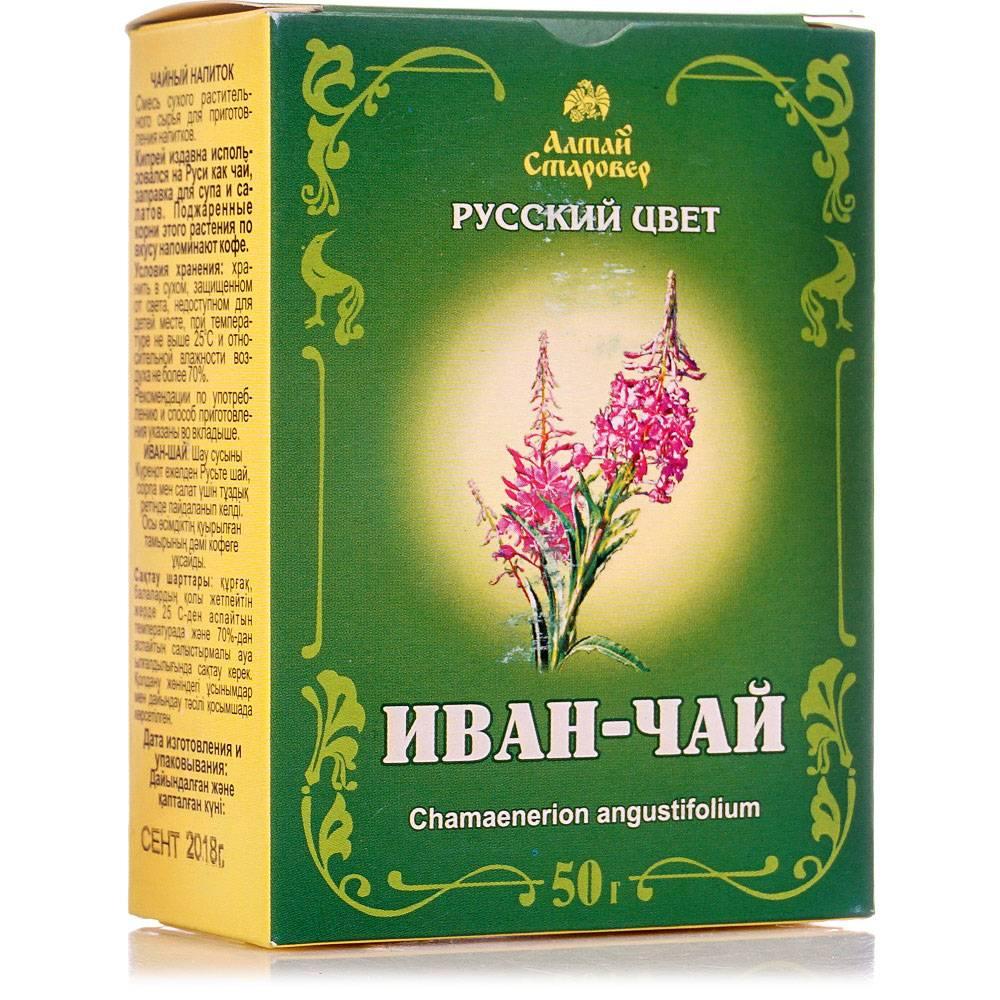 Иван-чай для мужчин: польза и вред, как правильно заваривать и пить
