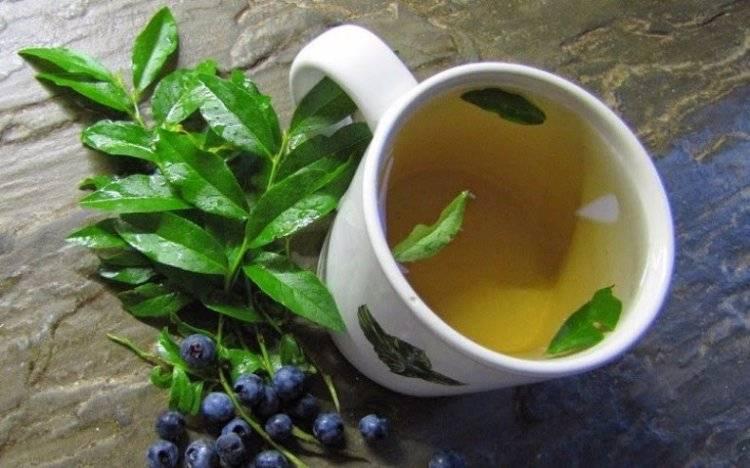 Зимние ягодные чаи: 10 лучших рецептов