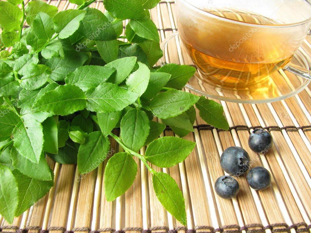 Полезные свойства ягод и листьев черники, рецепты применения
