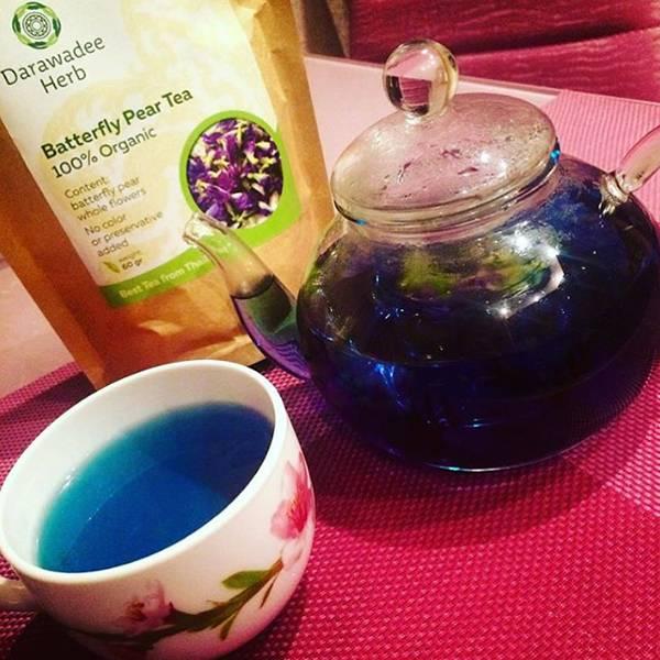 Как заваривать синий чай из таиланда? свойства синего чая