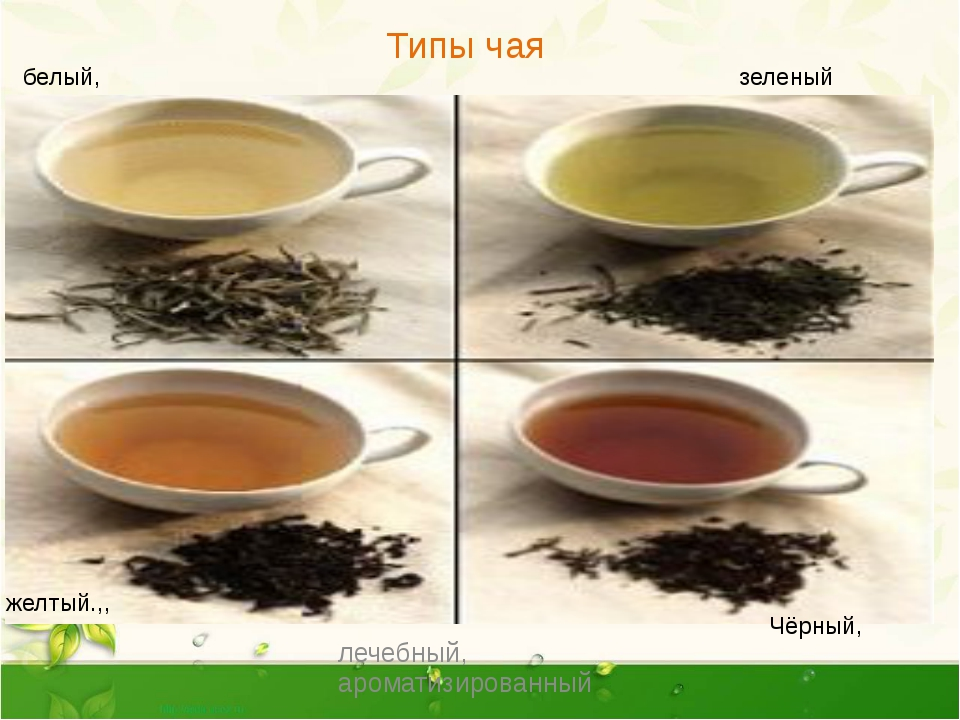 Какой чай полезнее черный или зеленый?