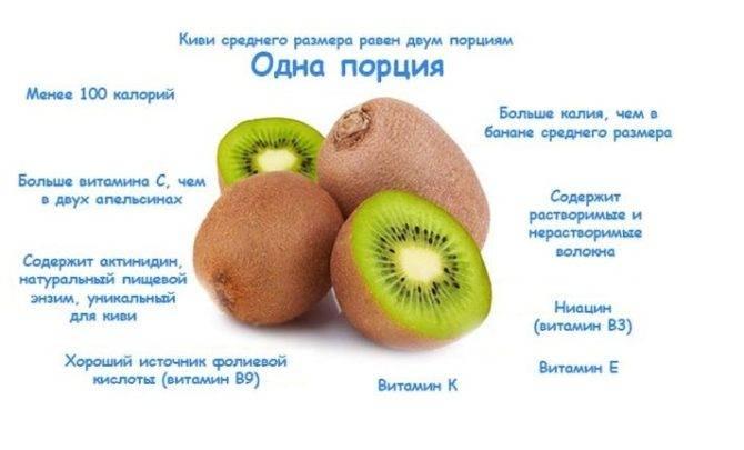 Польза и вред киви для организма человека + как правильно его есть