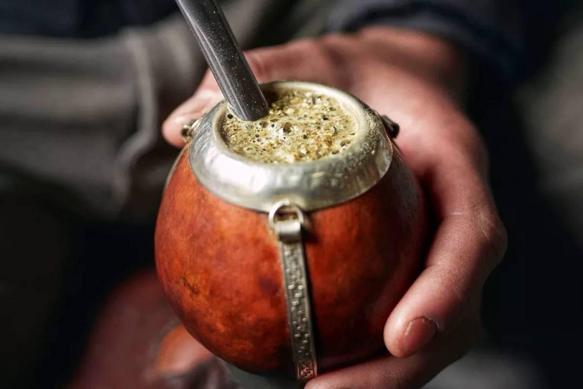 Матэ чай: польза, вред, свойства, как заваривать