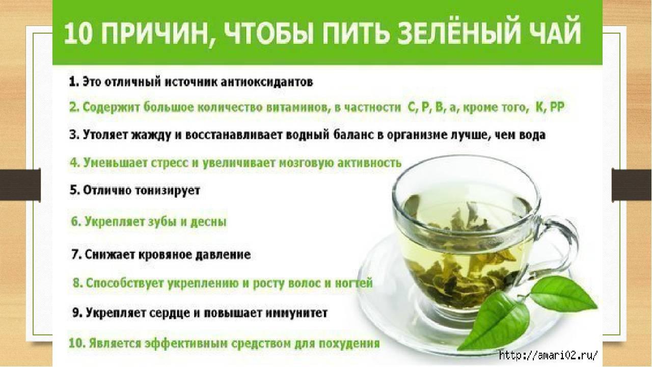 Зеленый чай в процессе похудения