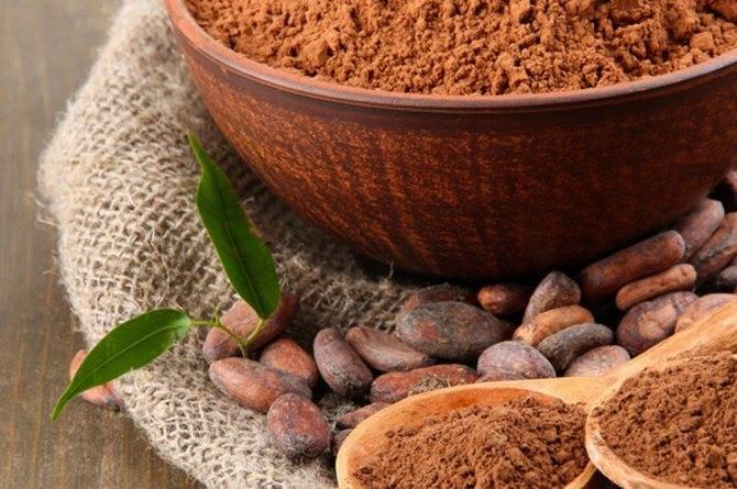 Шоколад при гастрите: можно ли горький шоколад при повышенной кислотности