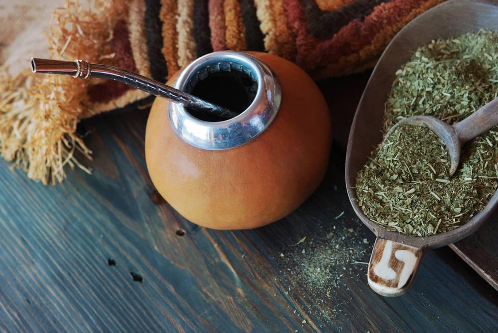 Чай мате (матэ): польза и вред, отзывы