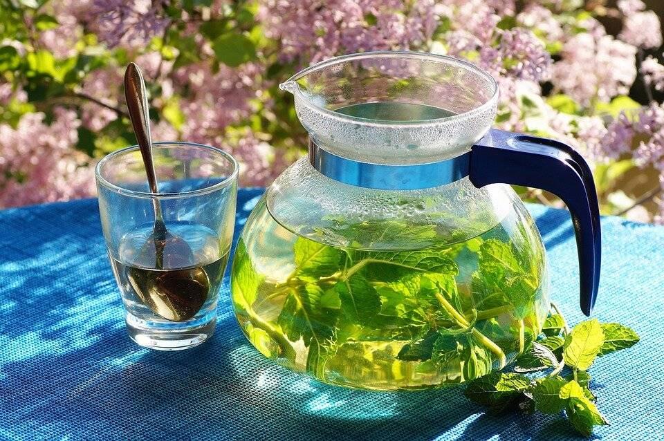 Успокоительные травы для нервной системы взрослого