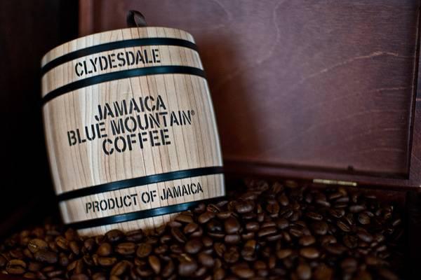Рецепты кофе в кофемашине delonghi и особенности их программирования: от эспрессо до капучино от эксперта