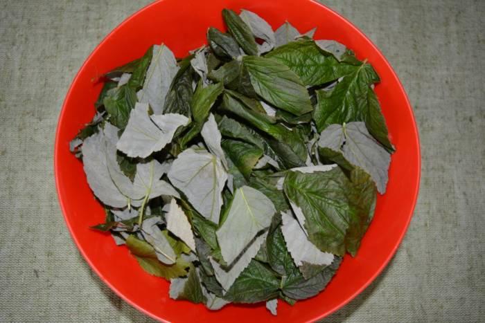 Чай из листьев малины: польза и вред, как и когда заваривать и собирать листья и ветки на зиму, чем полезны заготовки из сбора малины и смородины