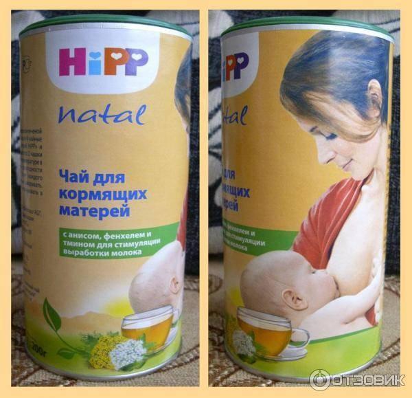Чай с медом при грудном вскармливании