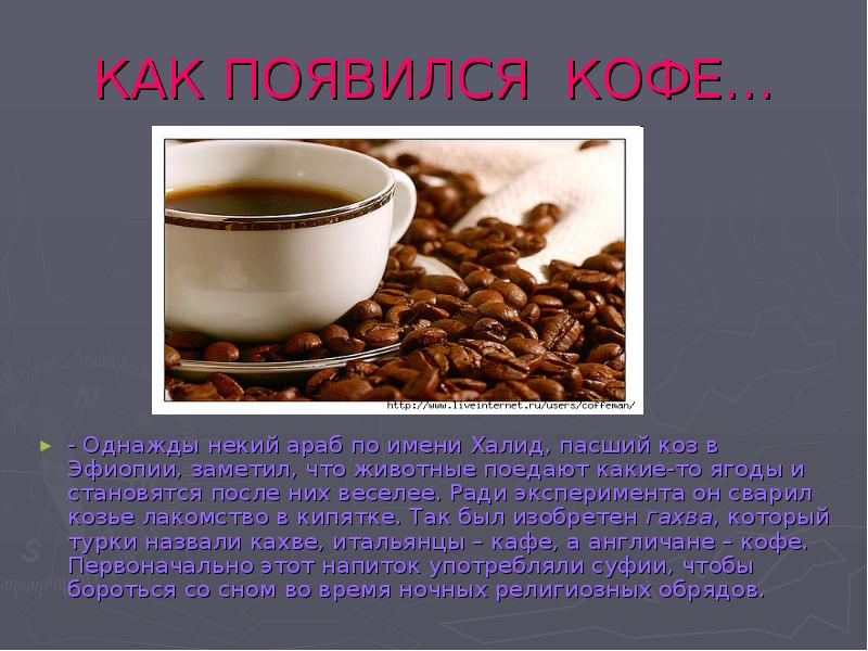 Родина кофе, страны, где выращивают кофе. история напитка