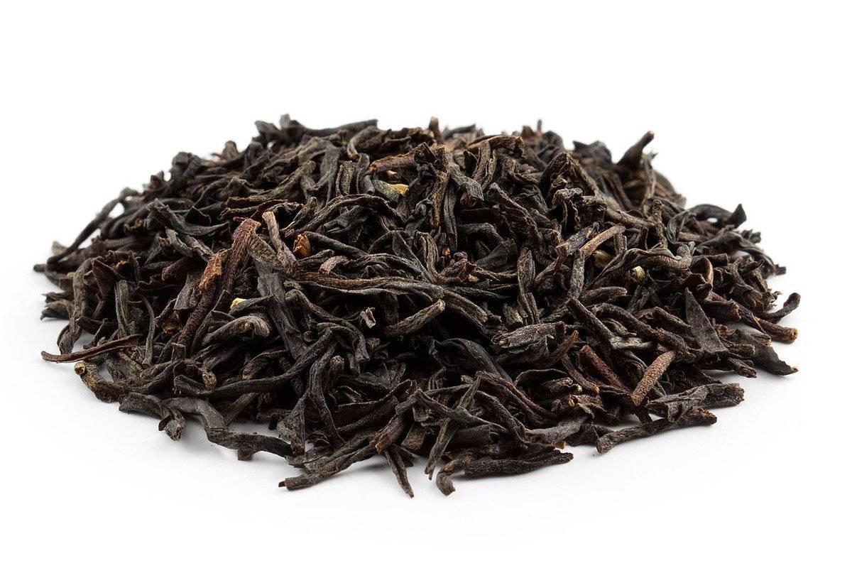 Чай ассам: описание индийского черного чая, полезные свойства