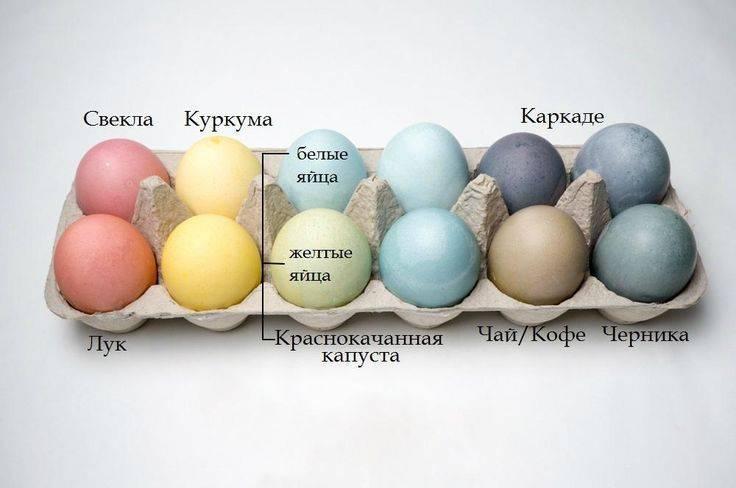 Как и чем красить яйца на пасху – простые и оригинальные способы