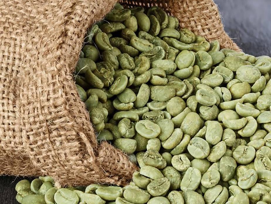 Зеленый кофе — польза и вред напитка