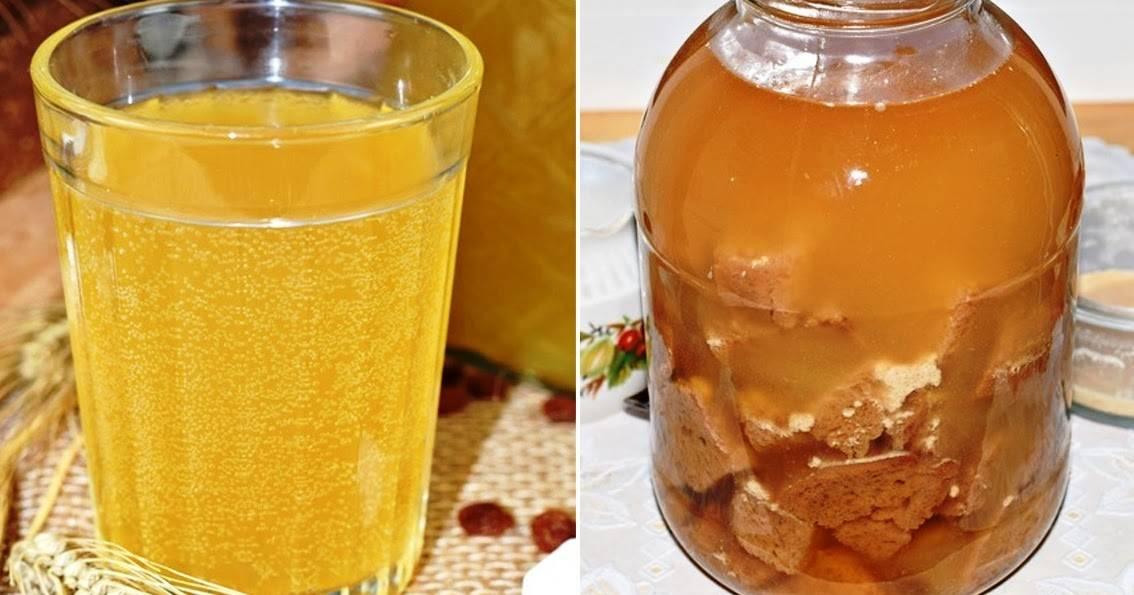 Квас с лимонной кислотой и сухими дрожжами - 9 пошаговых фото в рецепте