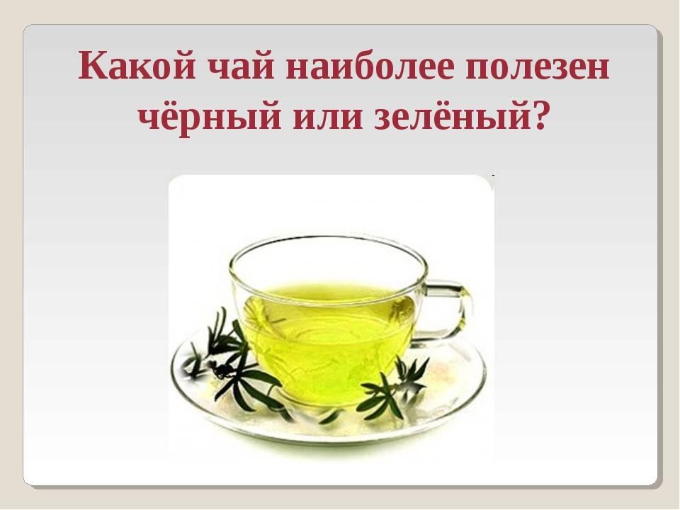 Какой чай полезнее: черный или зеленый, что лучше пить