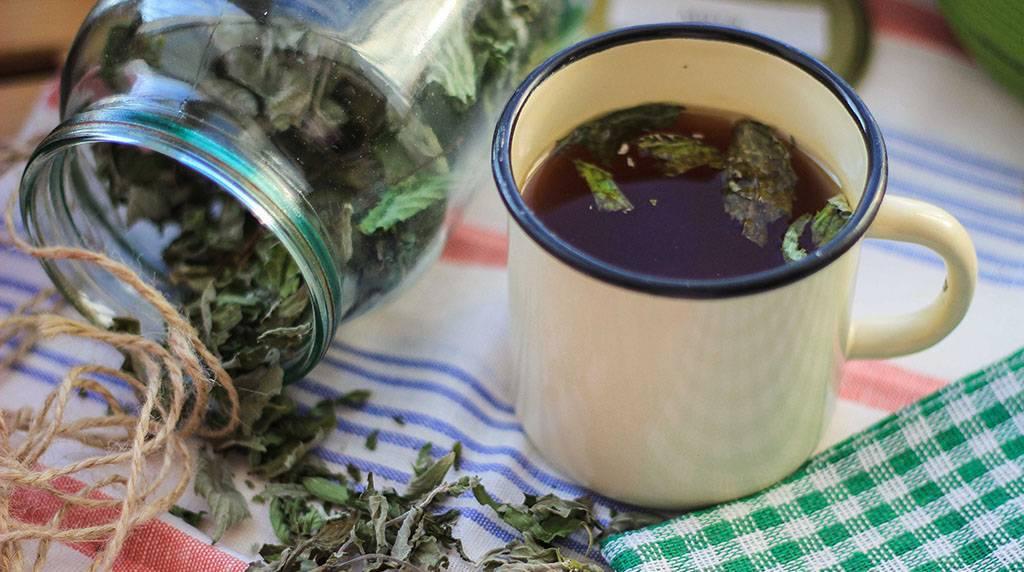 Как заваривать травы. как приготовить: настой, отвар, чай
