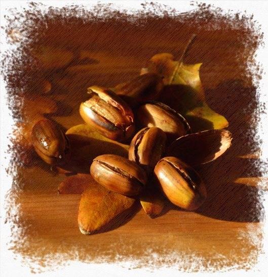 Кофе из желудей - поднимает настроение и дарит бодрость