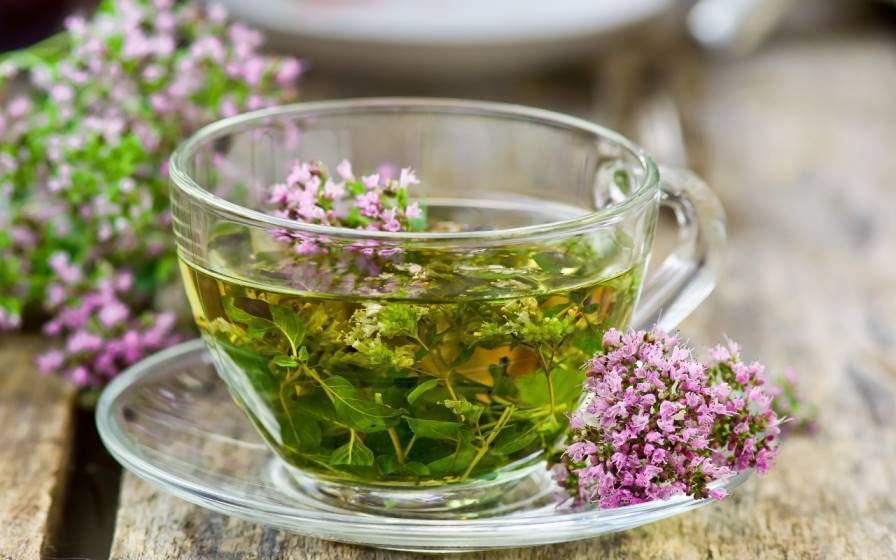Зверобой: польза и вред, лечебные свойства травы и противопоказания, отзывы